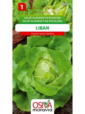 Seva Šalát hlávkový - Liban  0,5 g