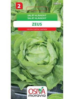 Seva Šalát hlávkový - Zeus 0,5 g